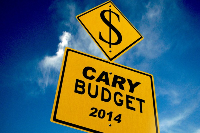 Our Cary Budget