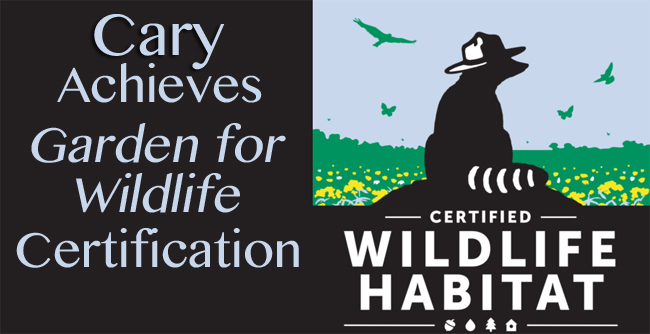 A Garden for Wildlife in Cary